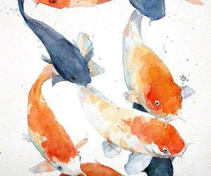 fish, animal, and art image