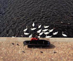 couple, lake, and romantic image