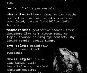 wolf, cinder, and marissa meyer image