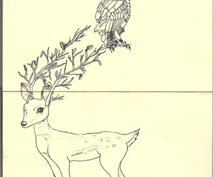 cute, owl, and sketch image