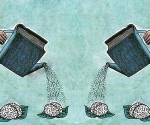 book, brain, and library image