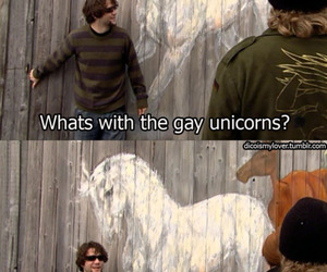 funny, unicorns, and awesome image