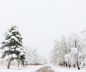 cold, season, and beautiful image