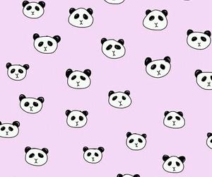 panda, wallpaper, and cute image