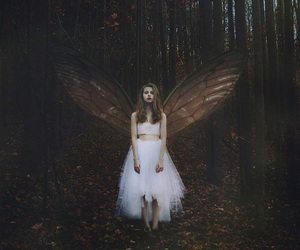 fairy, fantasy, and angel image