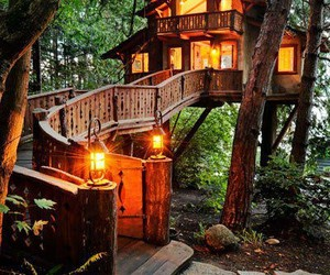 beautiful, tree house, and green image