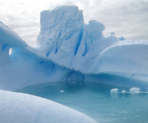 blue, white, and ice image