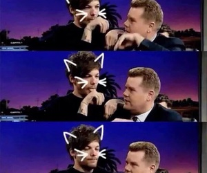 louis tomlinson, one direction, and cat image