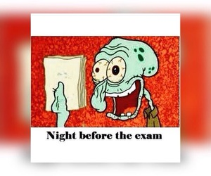 exams, night, and sleap image