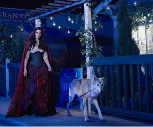 once upon a time, wolf, and ruby image