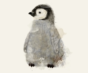 animal, art, and penguin image