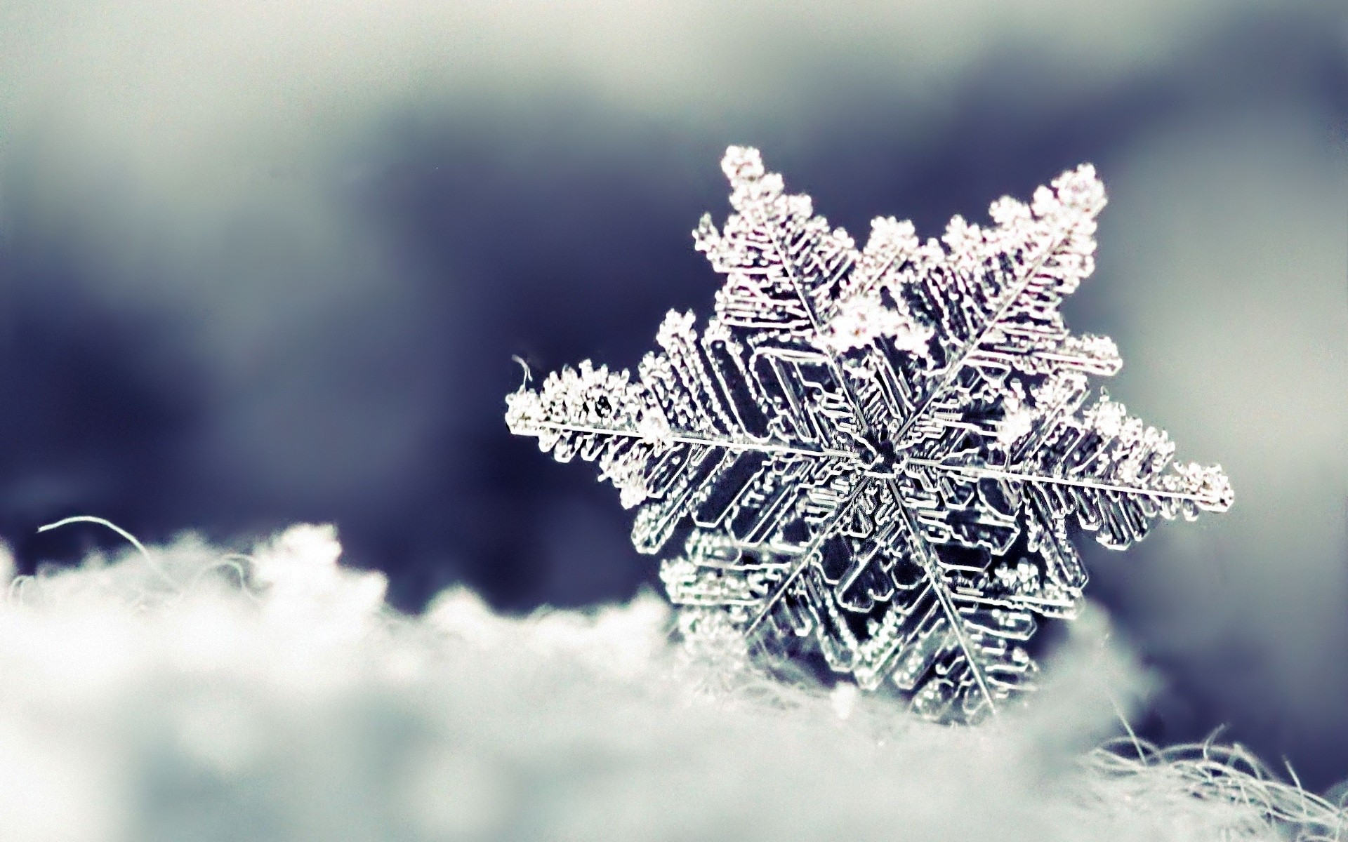 44 Images About Winter On We Heart It See More About