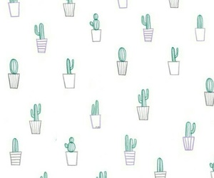 background, cactus, and wallpaper image
