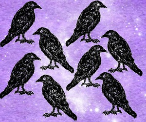 crow, goth, and pastel goth image