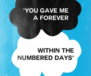 quote, the fault in our stars, and forever image