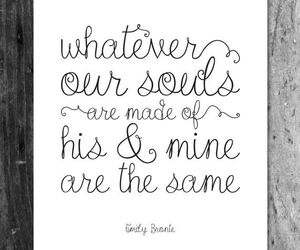 bronte, quotes, and love image