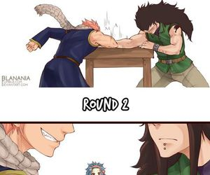 fairy tail and gale image