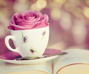 rose, book, and cup image