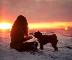 girl, dog, and snow image