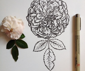 'flowers', 'grunge', and 'art' image