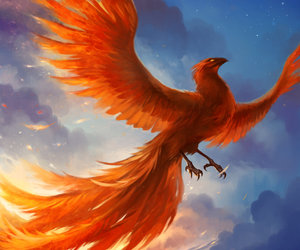 phoenix, fantasy, and fire image