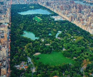 beaty, Central Park, and Dream image