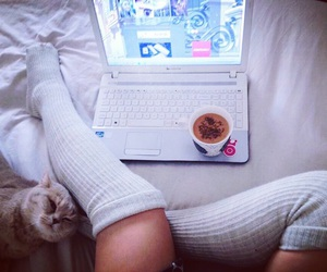 bedtime, cat, and fashion image