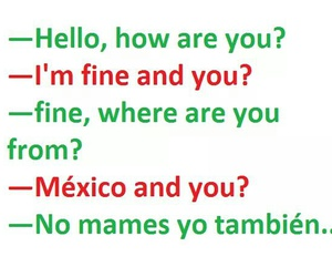 lol, mexico, and mexican image