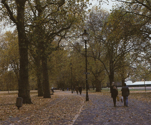 autumn, park, and trees image