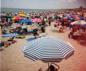 beach, umbrella, and photography image