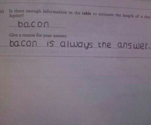 bacon, funny, and lol image