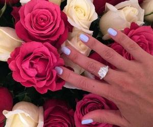 roses, fashion, and nails image
