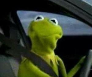 kermit, kermit the frog, and meme image