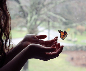 9b1f14fc4 60 images about Butterfly fly away Ƹ̴Ӂ̴Ʒεїз on We Heart It | See ...