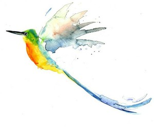 hummingbird, lovely, and water-colour image