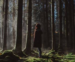 girl, nature, and woods image