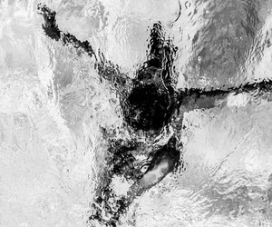 black and white, water, and summer image
