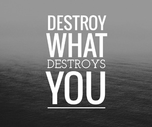 black and white, quote, and destroy image