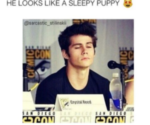 quote and dylan o'brien image