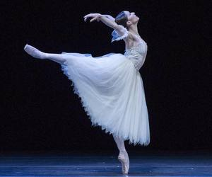 ballet, ballerina, and colorful image