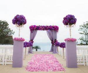 altar, flowers, and purple image
