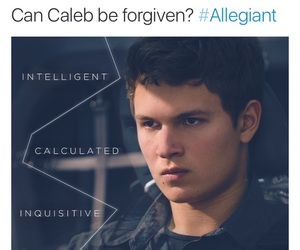 books, divergent, and allegiant image