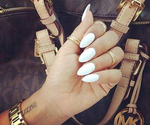 claws, nails, and white nails image