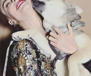 chanel, dog, and haute couture image