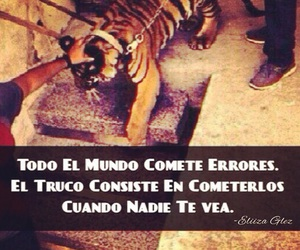 frases, buchones, and frases chingonas image