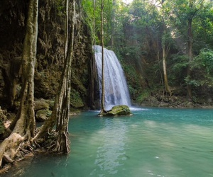 jungle, water, and waterval image