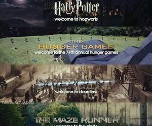 harry potter, divergent, and hunger games image