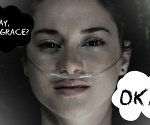 hazel, okay, and the fault in our stars image