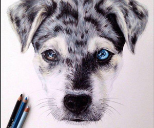 drawing, dog, and art image