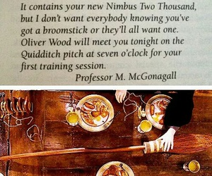 broomstick, funny, and gryffindor image